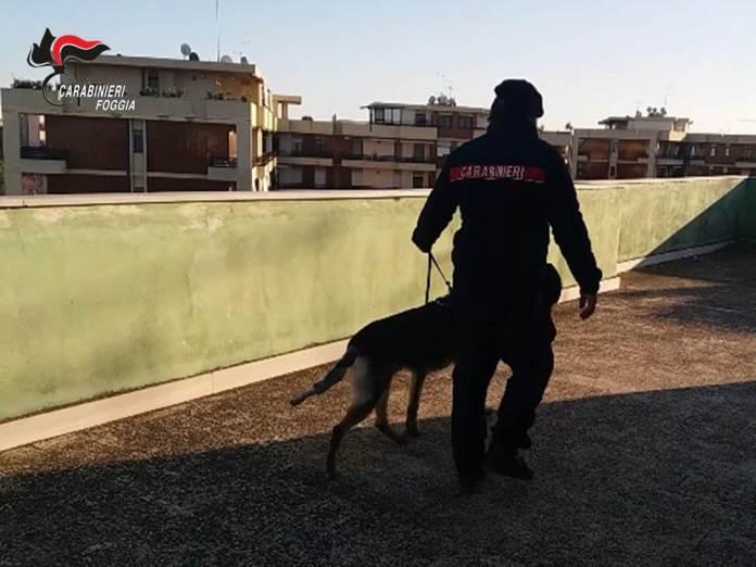 Cerignola, dopo Striscia scattano gli arresti al San Samuele