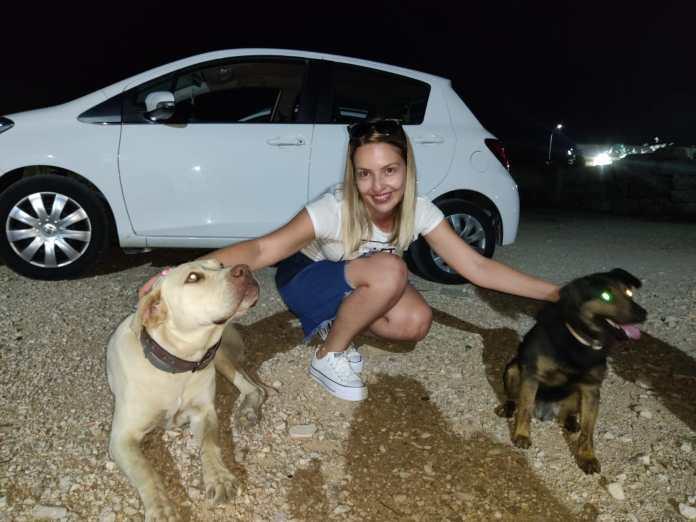 Nel Consiglio Comunale del 29/07/2020, su proposta dell'assessore Matera Bianca, è stato approvato il regolamento comunale inerente le adozioni dei cani di proprietà del Comune di Apricena ricoverati, sia presso il canile sanitario che presso il rifugio