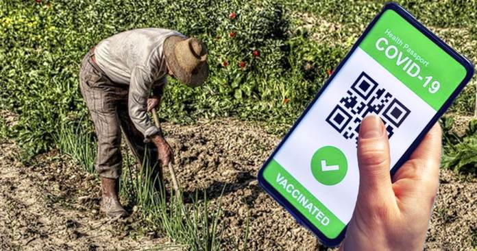 Green Pass agricoltura