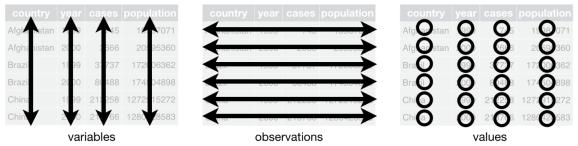 Structure of a dataset. Source: R for Data Science by Hadley Wickham & Garrett Grolemund