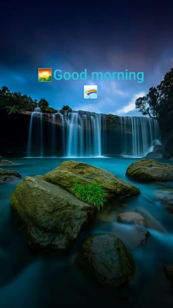 nature good morning status