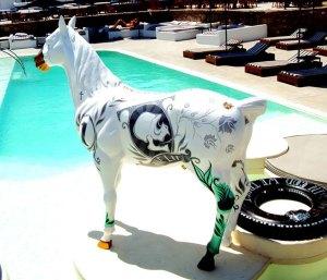 dollar-horse-pool-view