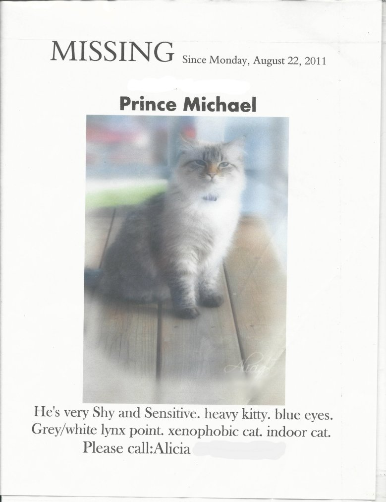 Missing Prince Michael