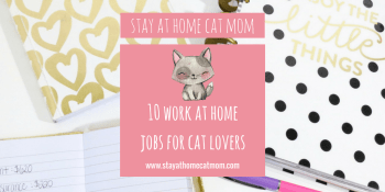 stay at home cat mom work from home jobs for cat lovers