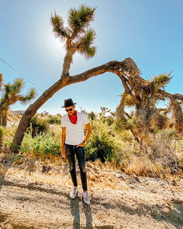 Another Day in the Desert - Stay Classic