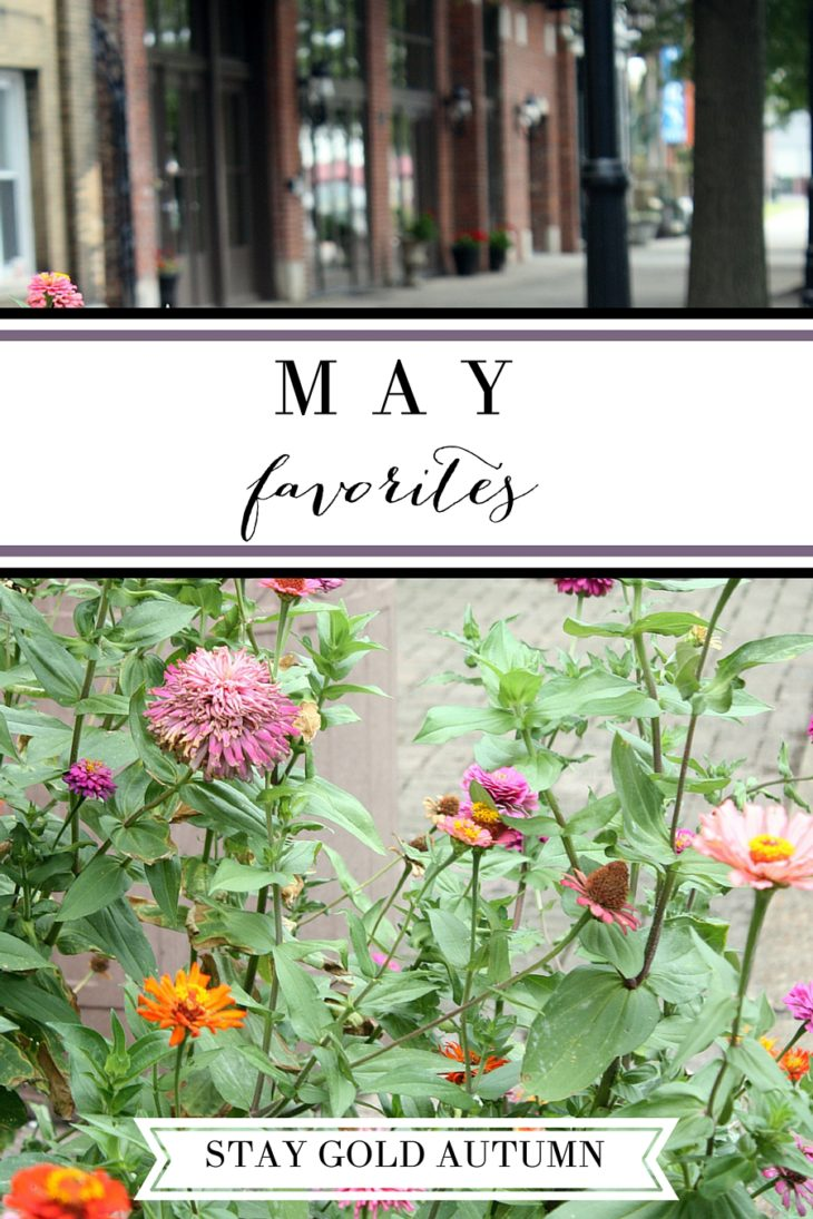 May favorites: my favorite blog posts to items we are picking up for our trip to Europe! | Stay gold Autumn