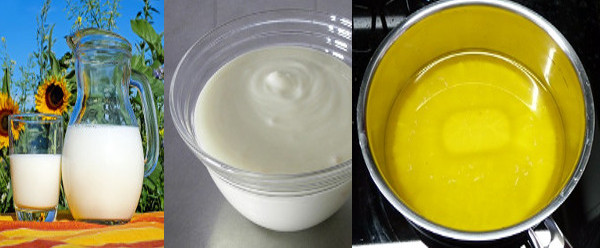 Indian-Vedic-A2 Cow's Products – Milk, Curd & Ghee