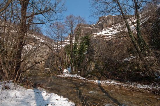 U klisuri Lasovske reke