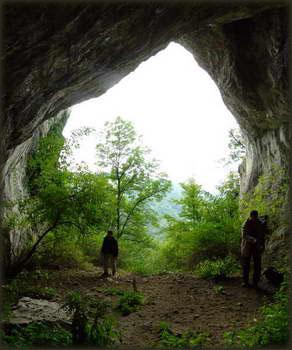Iz pećine