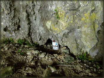Keš u pećini