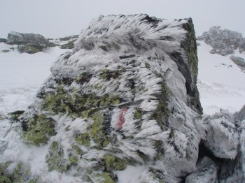 Posledica vetrometine na grebenu