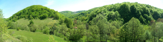 dolina Crne reke