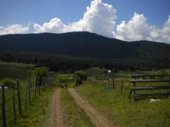 Kričačko polje i Crni vrh