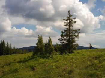 Drno brdo