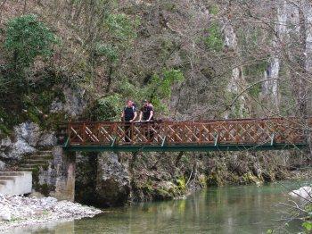 Most na Rzavu