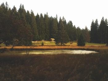 Dajićko jezero