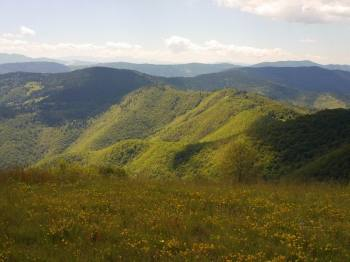 Pogled na planinu Kovač