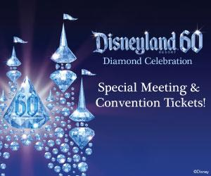 Disneyland Special Meeting and Convention Tickets