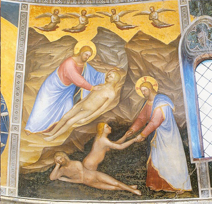 27th Sunday in Ordinary Time – Joining Jesus in Serving