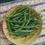 Bean - Organic Blue Lake Bush 274 String Bean - St. Clare Heirloom Seeds