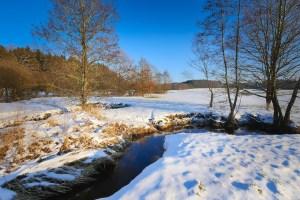 Winter in Wisconsin - St. Clare Heirloom Seeds