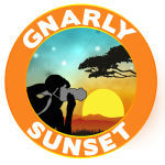 Gnarly Sunset Coupon Codes