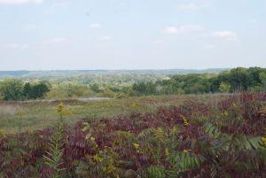 Site of the proposed Tiller-Zavoral gravel mine