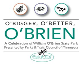 William O'Brien State Park party