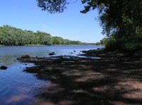 Wild River State Park - St. Croix River