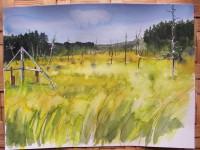 Bog Fen Research Site, by Kathleen Heideman
