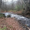 Trout streams improve thanks to new collaborations