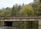 Beautiful bridge and willow
