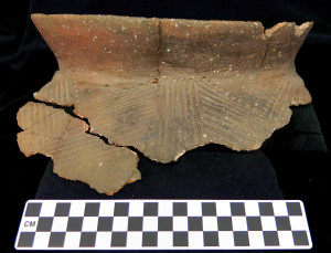 Oneota pottery from the Sheffield Site (Photo courtesy Science Museum of Minnesota)