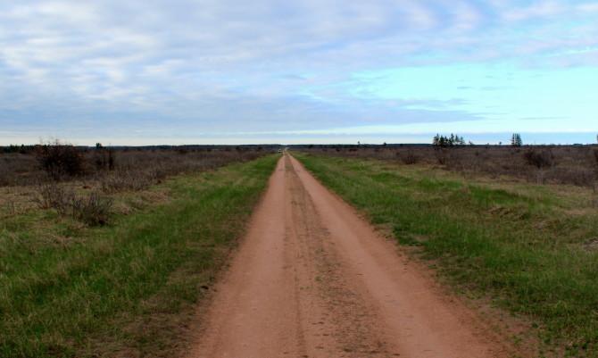 Gomulak Road, Namekagon Barrens.