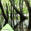 River Bum Blog: Starting the St. Croix Summer Serial