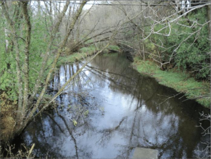 Goose Creek (Photo courtesy MPCA)