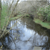 Studies identify water quality problems and remedies for the Goose Creek Watershed