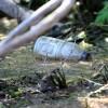 Volunteers Needed for St. Croix Clean-Ups