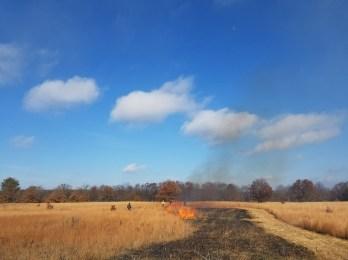 River Bum Log: Burning on the bluffs under blue skies