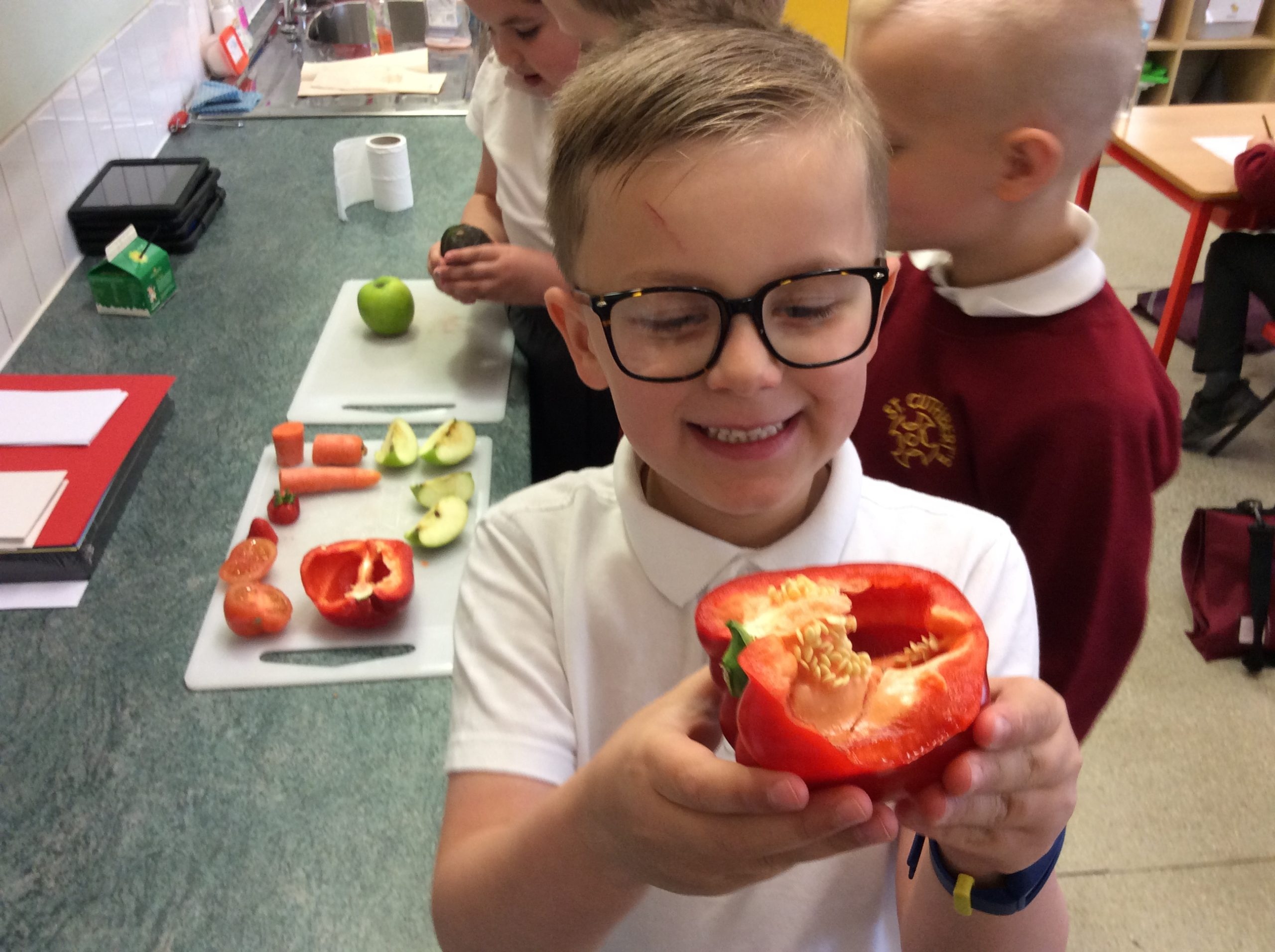 Year 2 investigated different fruits.
