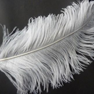 Steampunk Straussvogel-Feder