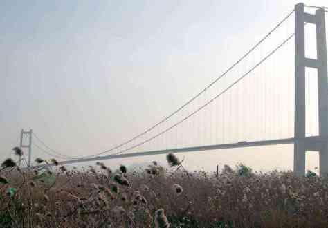 Runyang Bridge side view