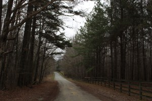 Historic Stagville Path