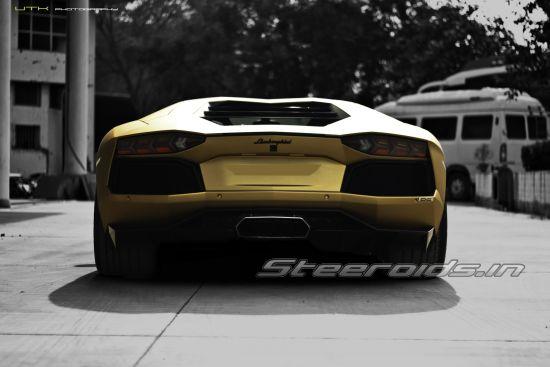 Steeroids In