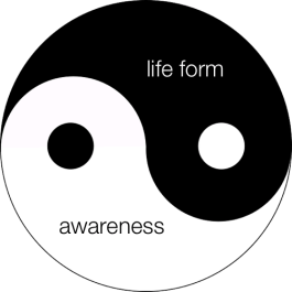 Inspiration and Enlightenment Ying Yang Awareness Life Form