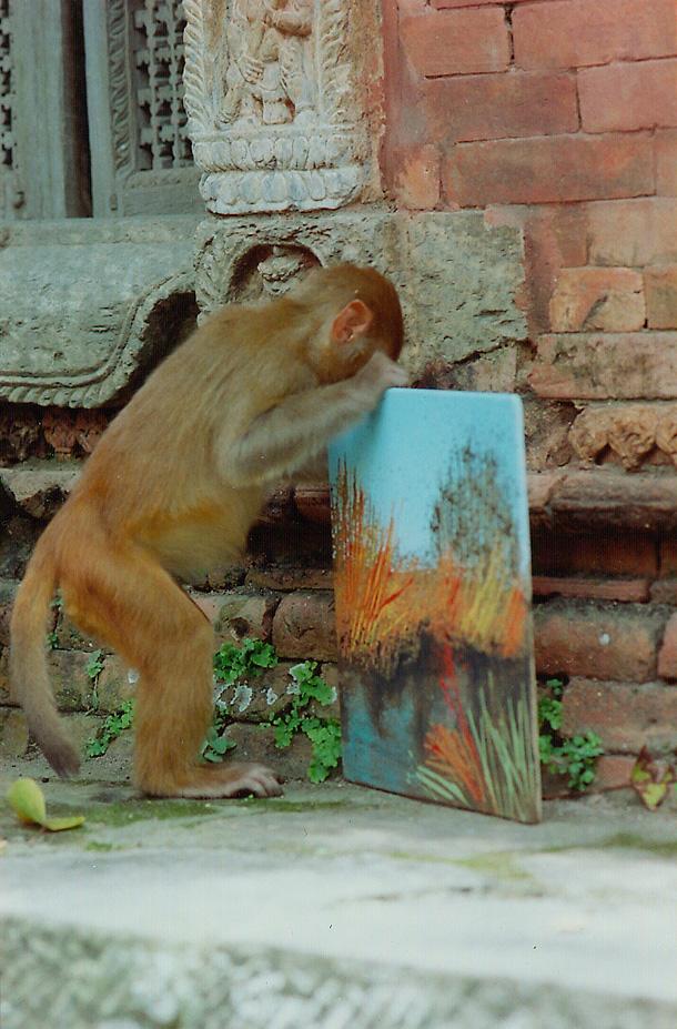 Una scimmia afferra un quadro