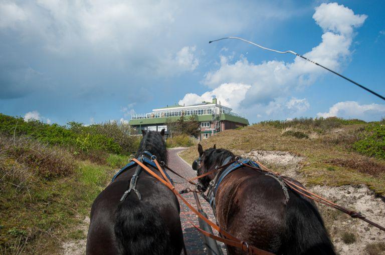 Romantische Inselkutschfahrt Und Fahrt Mit Der Hochzeitskutsche
