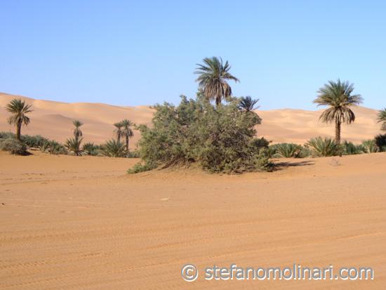 Oasi del Sahara - Sahara Acacus - Libia