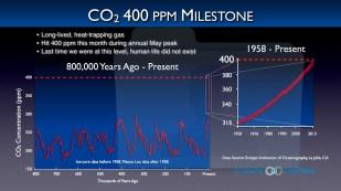 Senza foresta chi si mangia il carbonio? CO2 a 400 parti per milione