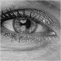 Catchlights/reflektioner i ögon från softbox och reflexskärm vid clamshell-ljussättning